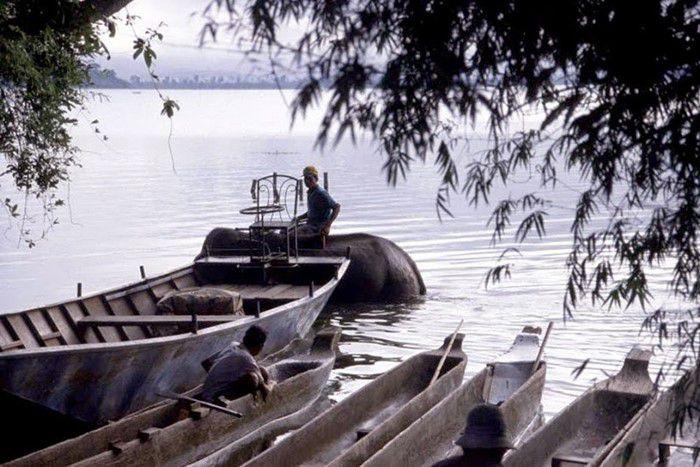 Khu du lịch Hồ - Đồi Thông Cư Dluê